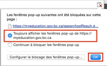 Google_popup2
