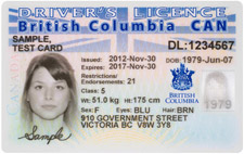 driverslicensce